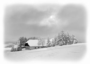 Wintersonne_1